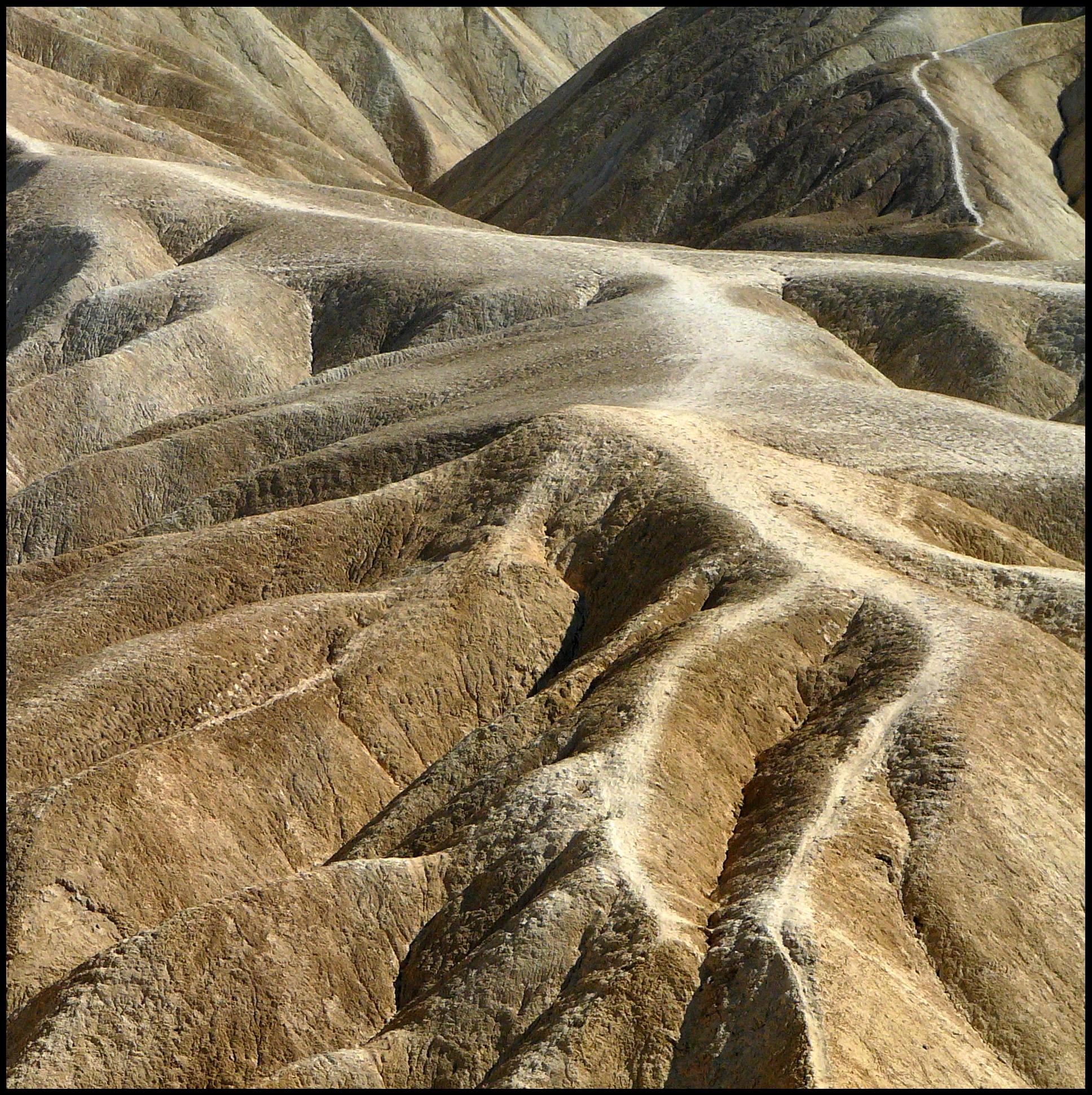 California2006_-481.br